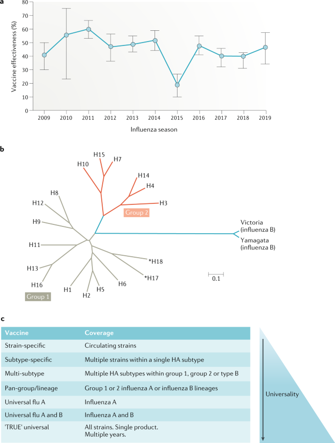 Next-generation influenza vaccines: opportunities and challenges ...