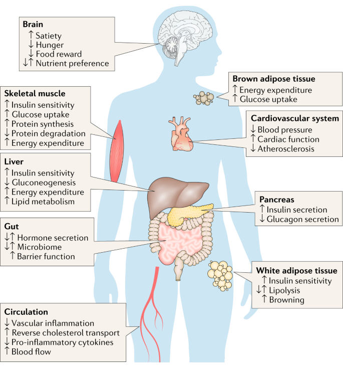 Emerging hormonal-based combination pharmacotherapies for