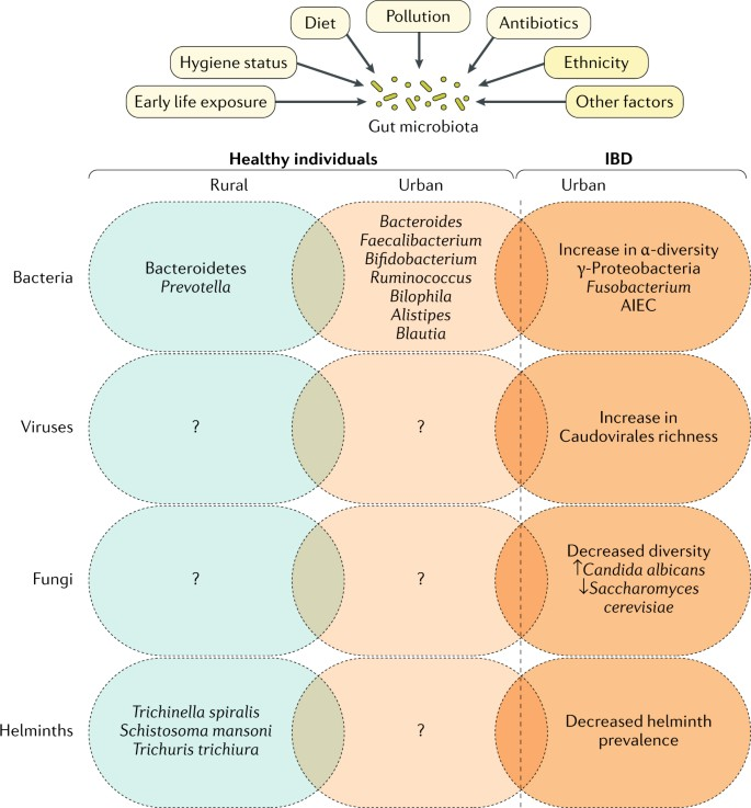 Urbanization and the gut microbiota in health and
