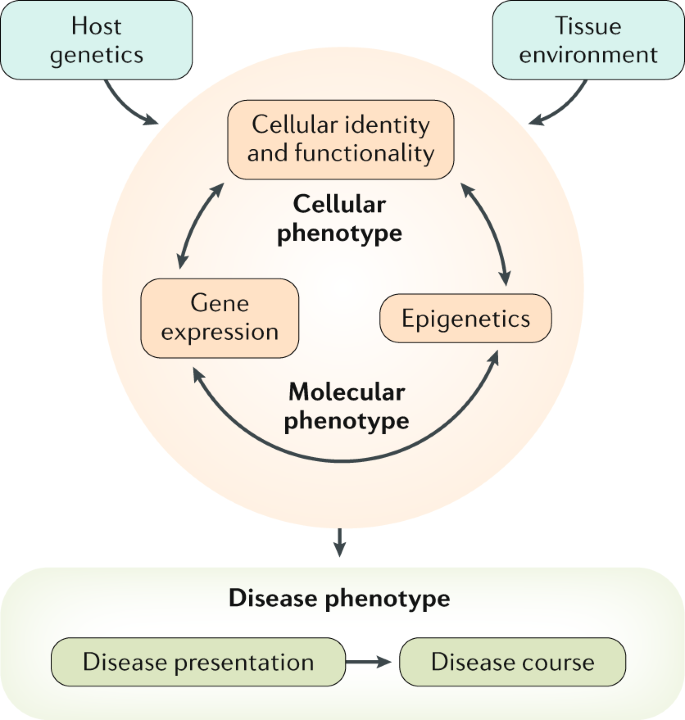 Redefining the IBDs using genome-scale molecular phenotyping