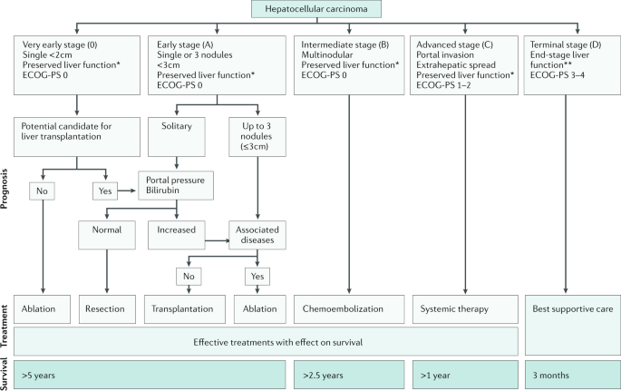 Insights into the success and failure of systemic therapy