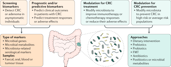 Gut Microbiota In Colorectal Cancer Mechanisms Of Action And Clinical Applications Nature Reviews Gastroenterology Hepatology