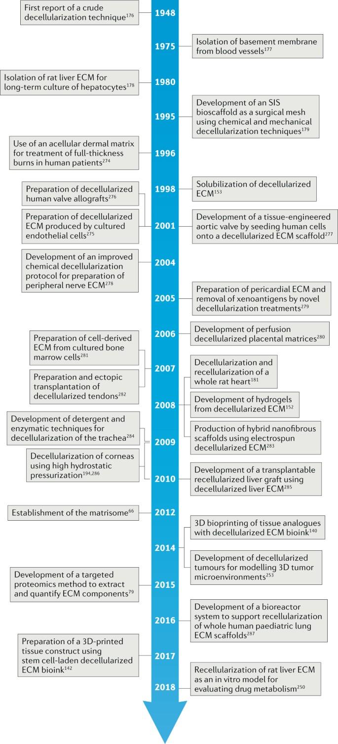 Extracellular matrix-based materials for regenerative medicine