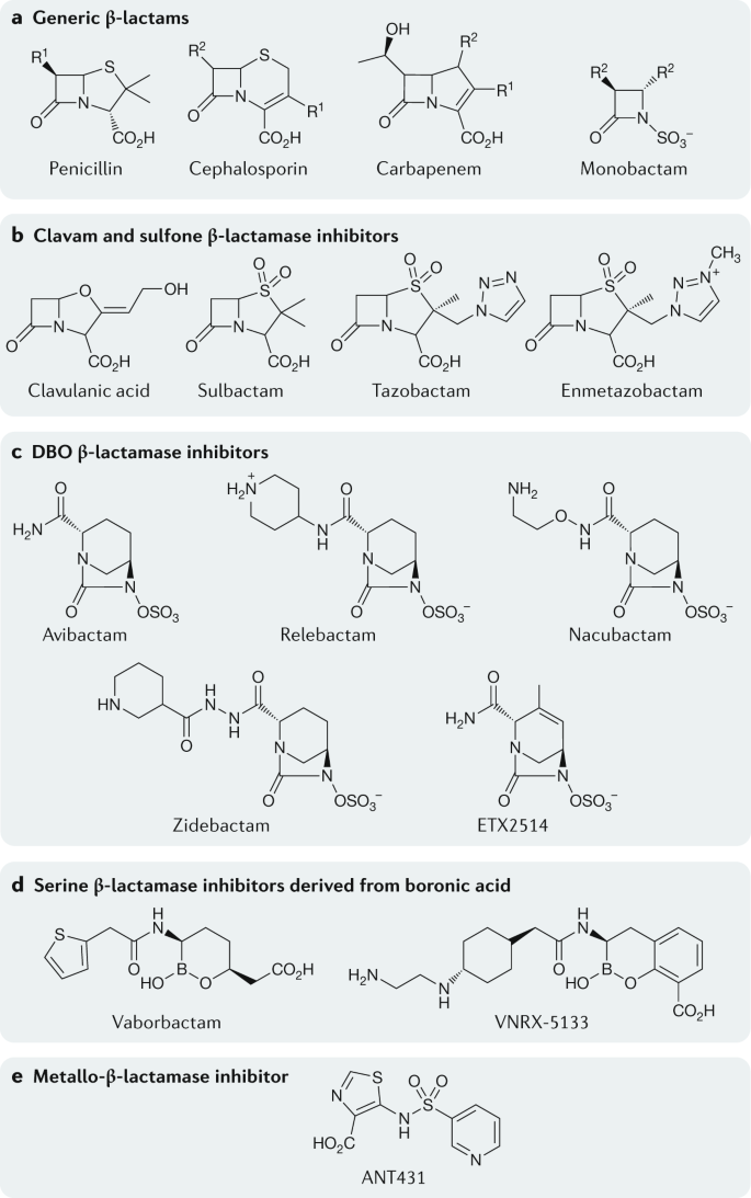 Interplay Between β-lactamases And New β-lactamase Inhibitors   Nature  Reviews Microbiology