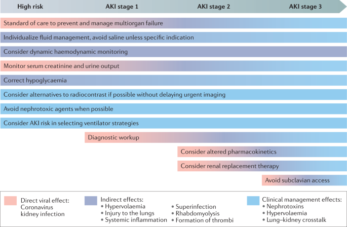 Covid 19 Associated Acute Kidney Injury Consensus Report Of The 25th Acute Disease Quality Initiative Adqi Workgroup Nature Reviews Nephrology