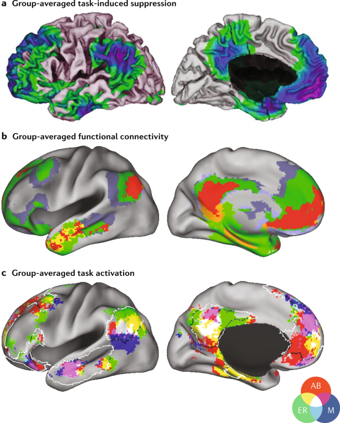 The brain's default network: updated anatomy, physiology and