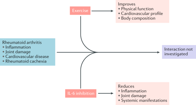 Could Il 6 Inhibition Prevent Exercise Induced Fat Loss In Ra Nature Reviews Rheumatology