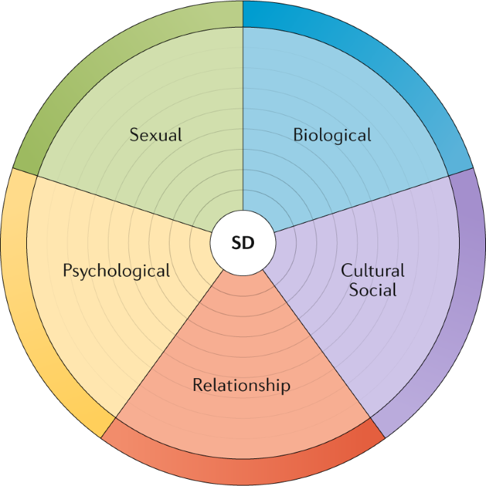 Supporting sexuality and improving sexual function in