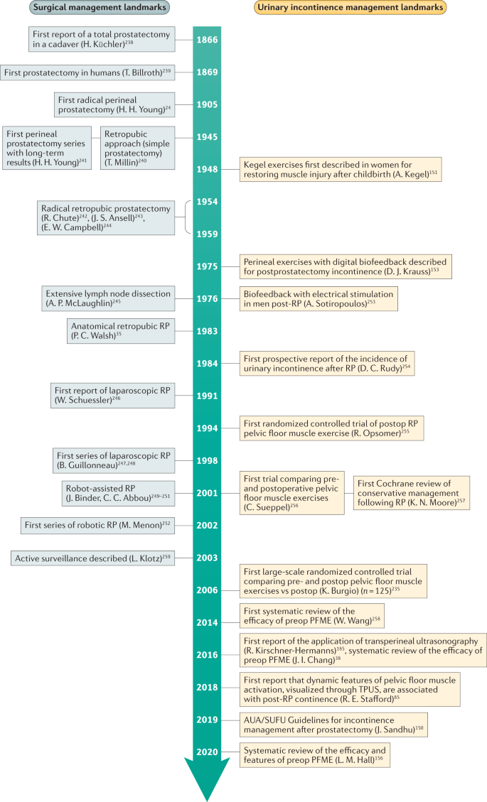 Preoperative Exercise Interventions To Optimize Continence Outcomes Following Radical Prostatectomy Nature Reviews Urology