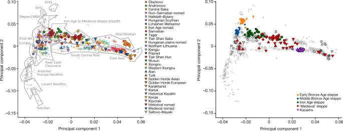 137 ancient human genomes from across the Eurasian steppes
