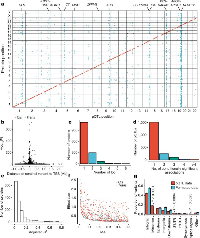 Genomic atlas of the human plasma proteome | Nature
