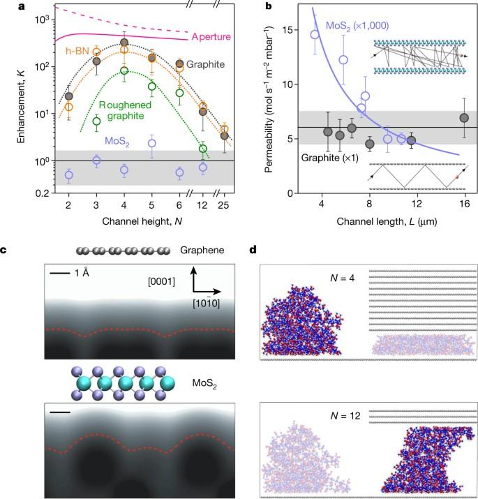 Ballistic molecular transport through two-dimensional