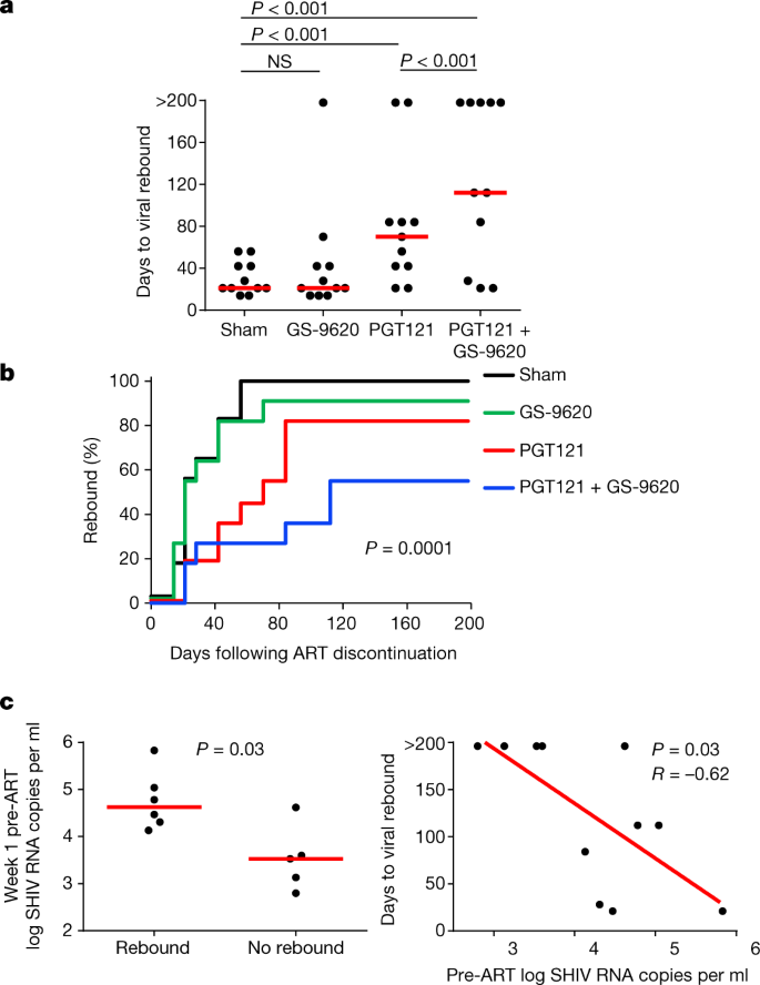 Antibody and TLR7 agonist delay viral rebound in SHIV-infected