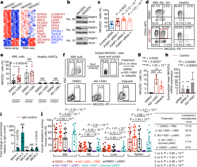 Absence of NKG2D ligands defines leukaemia stem cells and