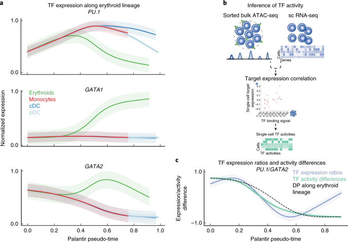 Characterization of cell fate probabilities in single-cell data with