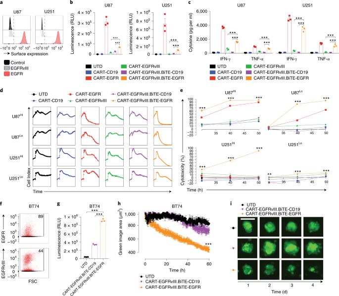 CAR-T cells secreting BiTEs circumvent antigen escape
