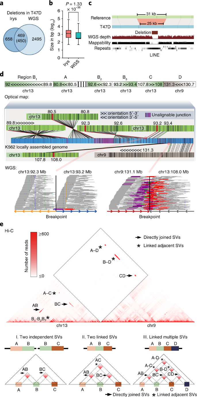 Integrative detection and analysis of structural variation in cancer