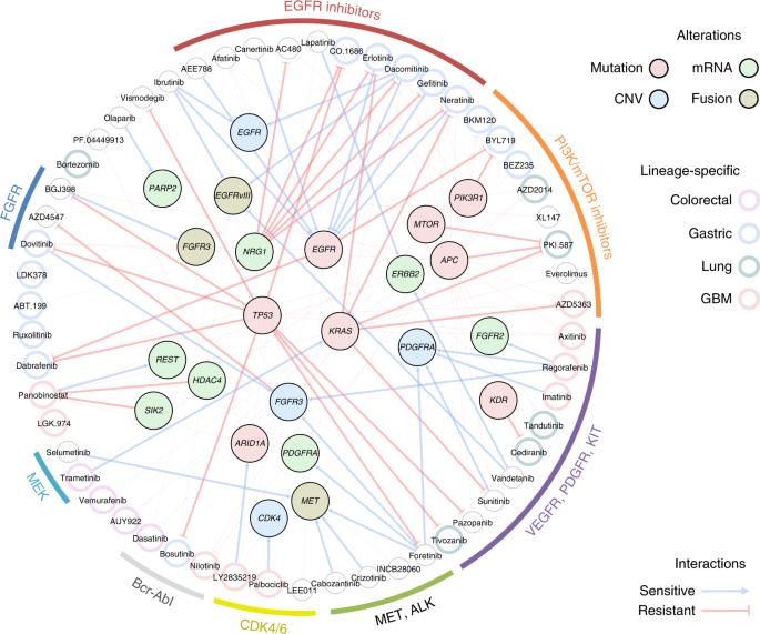 Pharmacogenomic landscape of patient-derived tumor cells