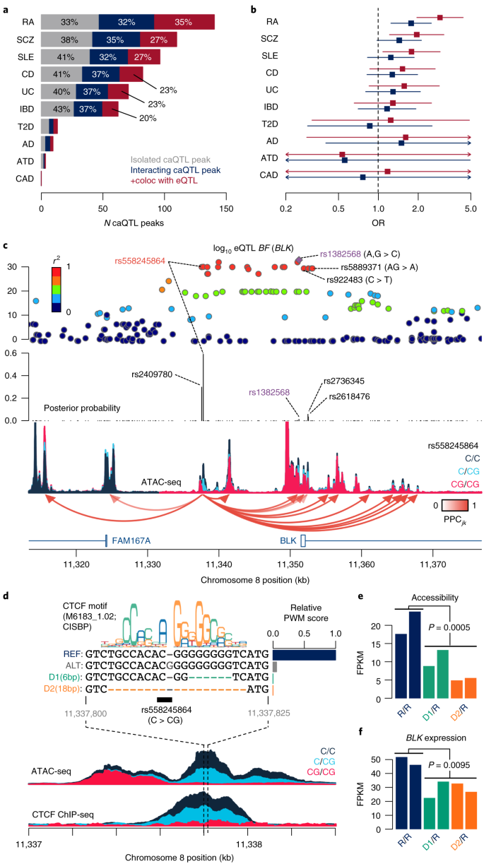 High-resolution genetic mapping of putative causal