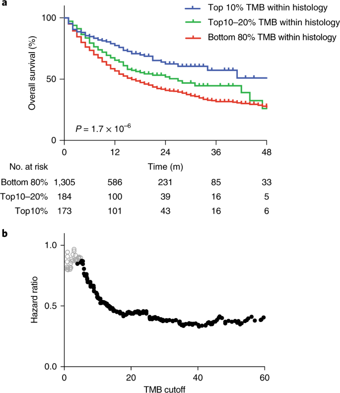 Tumor mutational load predicts survival after immunotherapy across