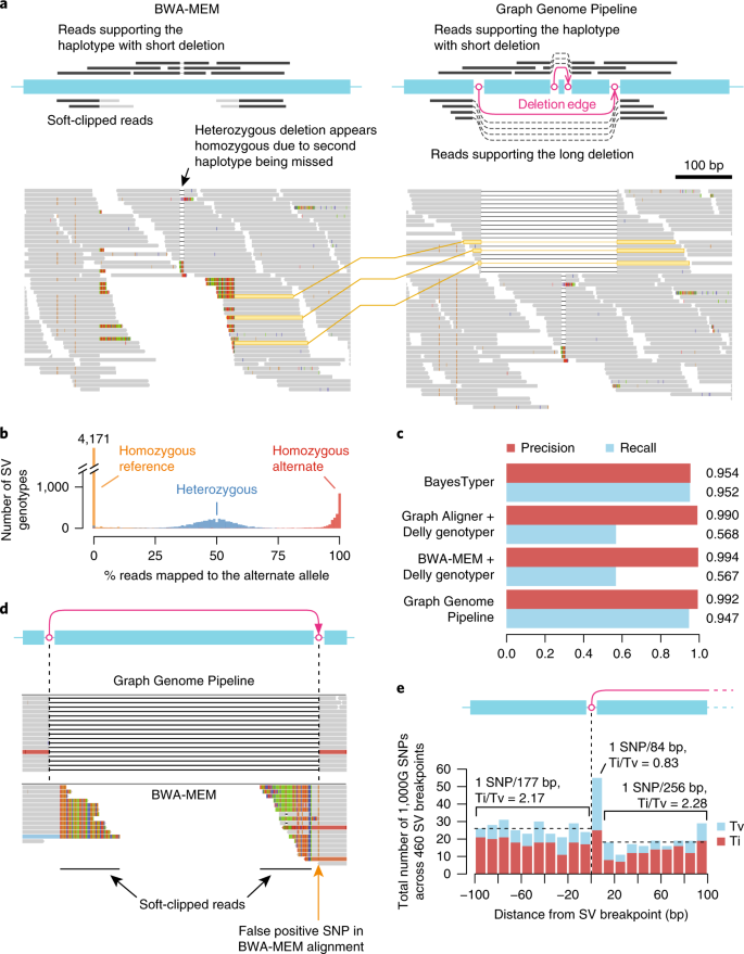 Fast and accurate genomic analyses using genome graphs | Nature Genetics
