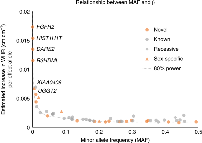 Protein-coding variants implicate novel genes related to