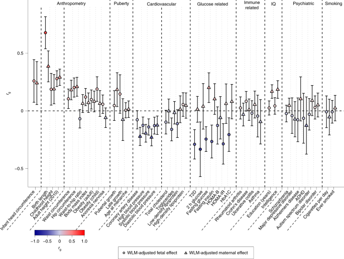 Maternal and fetal genetic effects on birth weight and their