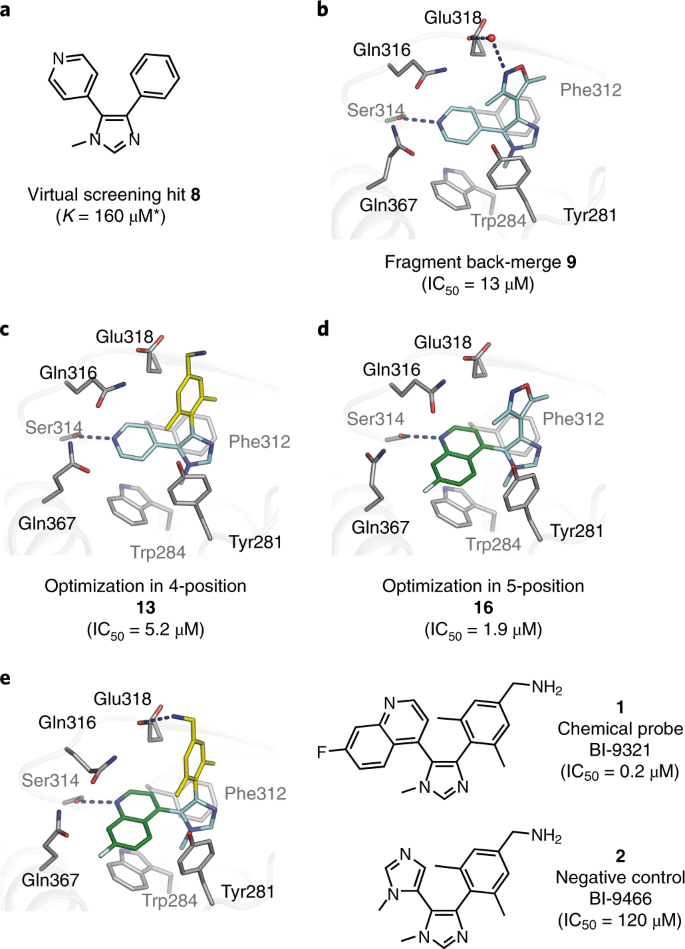 Fragment-based discovery of a chemical probe for the PWWP1