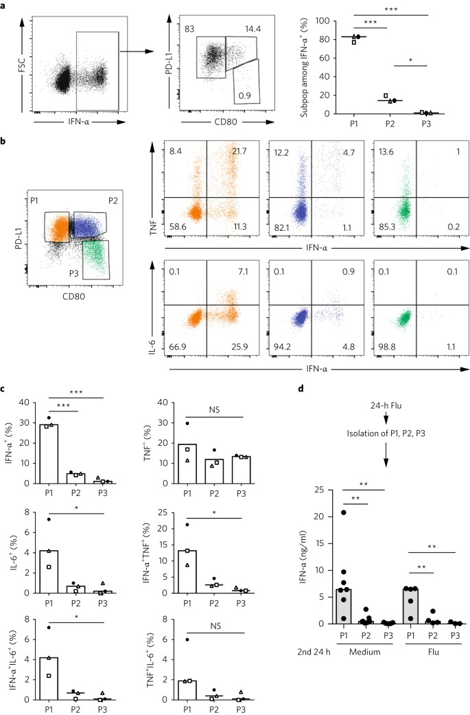 Diversification of human plasmacytoid predendritic cells in