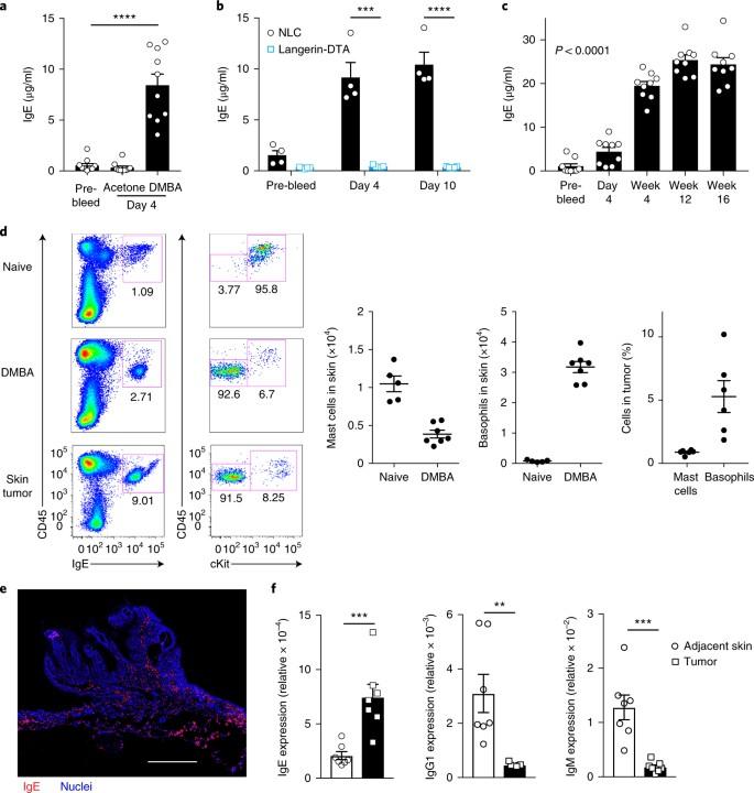 Epithelial damage and tissue γδ T cells promote a unique