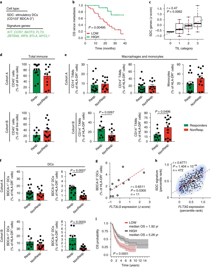 A natural killer–dendritic cell axis defines checkpoint