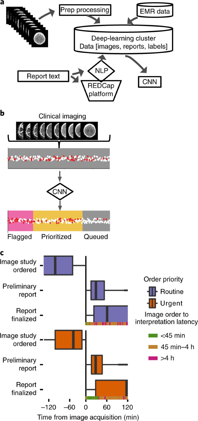 Automated deep-neural-network surveillance of cranial images