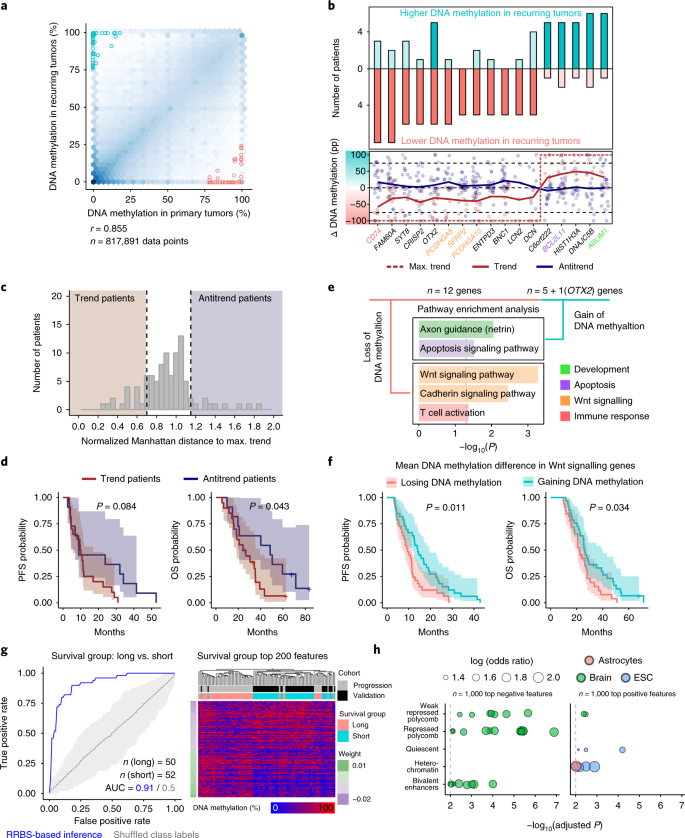 The DNA methylation landscape of glioblastoma disease