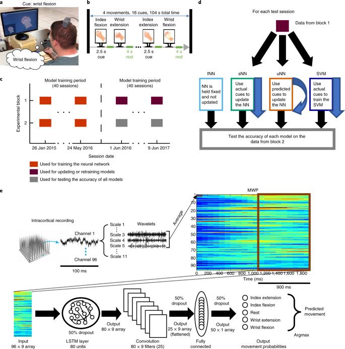 Meeting brain–computer interface user performance