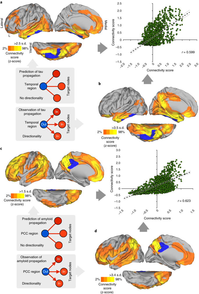 Neurogenetic contributions to amyloid beta and tau spreading in the