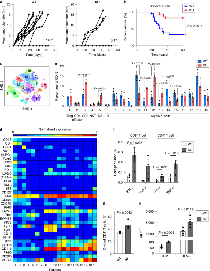 Siglec-15 as an immune suppressor and potential target for