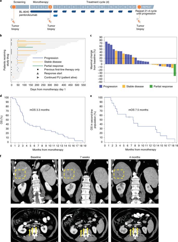 pancreatic cancer pembrolizumab