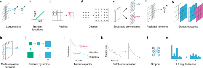 Deep learning for cellular image analysis | Nature Methods