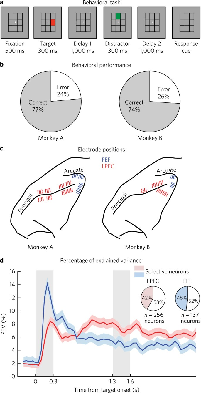 Mixed selectivity morphs population codes in prefrontal cortex