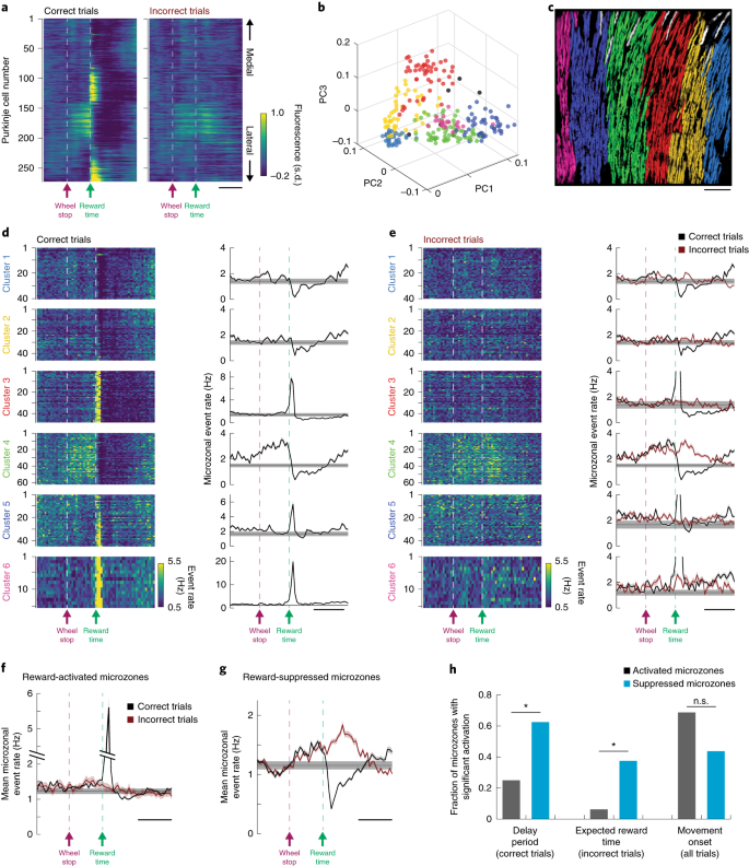 Predictive and reactive reward signals conveyed by climbing