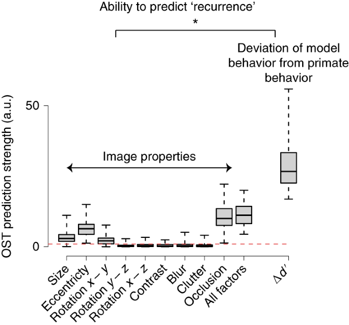 Evidence that recurrent circuits are critical to the ventral