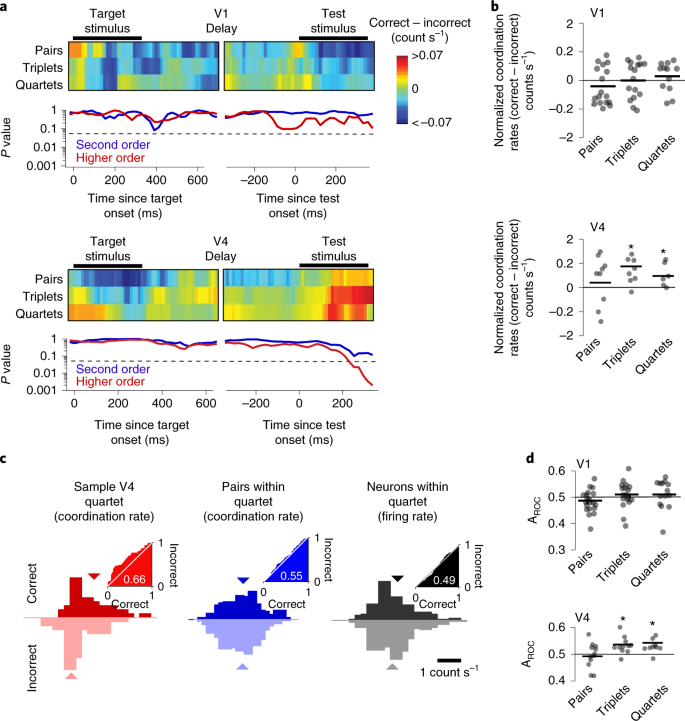 High-order coordination of cortical spiking activity