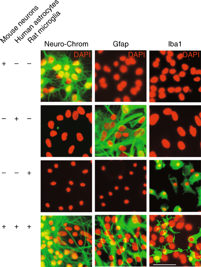 Mixed-species RNA-seq for elucidation of non-cell-autonomous control