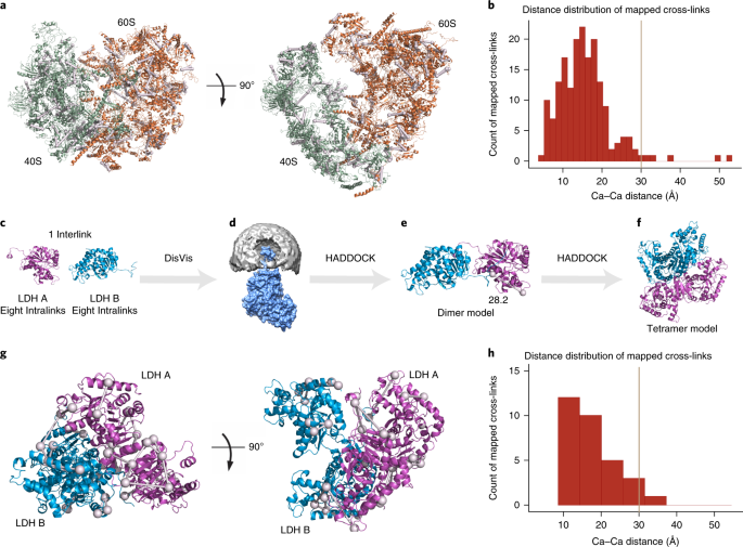 Efficient and robust proteome-wide approaches for cross