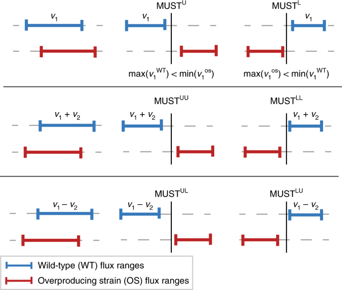 Creation and analysis of biochemical constraint-based models