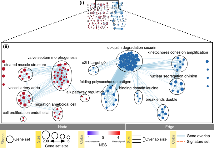 Pathway enrichment analysis and visualization of omics data