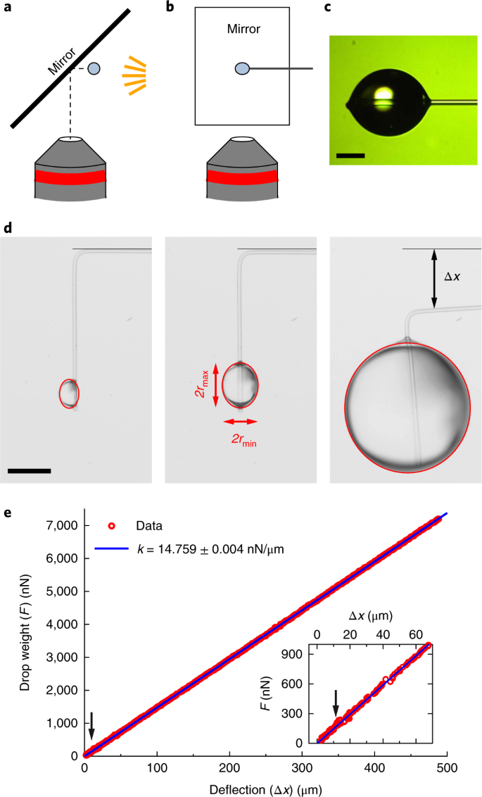 Micropipette force sensors for in vivo force measurements on