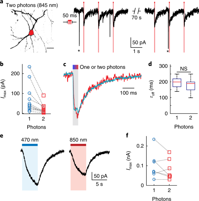 Holographic two-photon activation for synthetic optogenetics