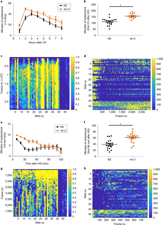 Quantitative imaging of sleep behavior in Caenorhabditis