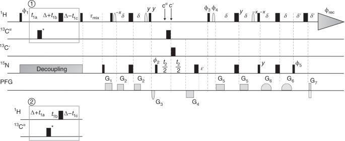 Structure determination protocol for transmembrane domain oligomers